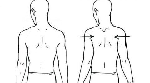 what muscles should i train for better posture