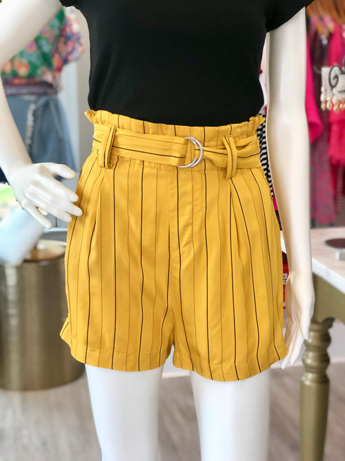Stripe High Waisted Shorts With Belt