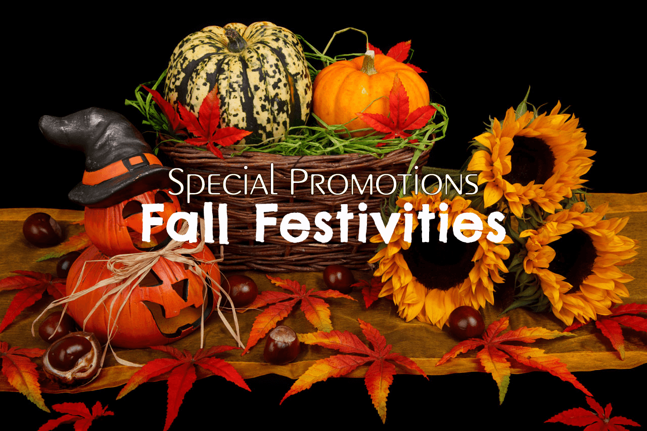 Special Promotions | Fall Festivities