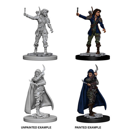 Mini - Pathfinder Deep Cuts : Human Rogue (Female)