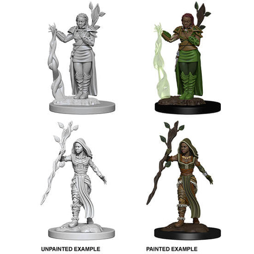 Mini - D&D Nolzur's Marvelous : Human Druid (Female)
