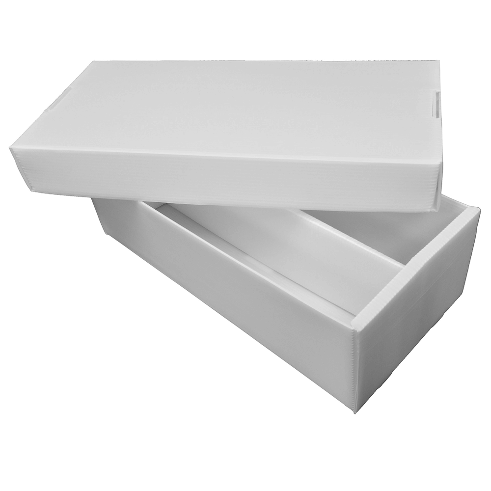 Box - Cardboard Storage : 2-row Shoebox