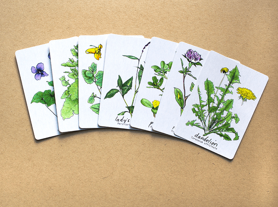 Plant Hunting Memory Card Game