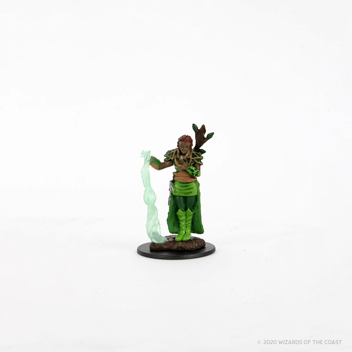 Mini - D&D Icons of the Realms Premium : Human Druid (Female)