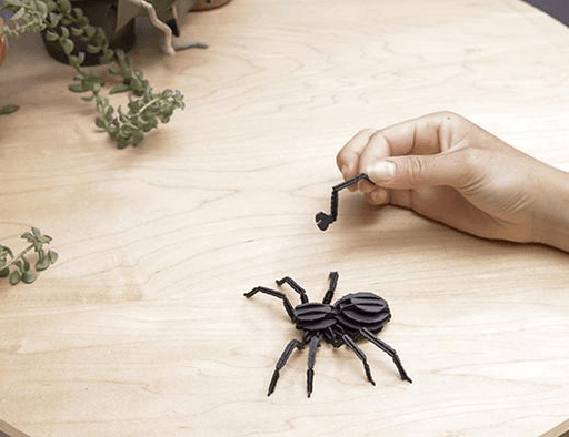 3D Paper Puzzle Insect
