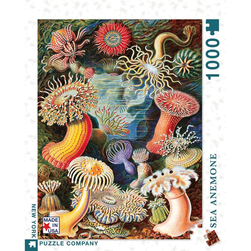 Puzzle (1000pc) Ernst Haeckel : Sea Anemones