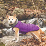 dgs outerwear, dog gone smart, repelz-it jackets, dog jackets, DGS Tamarack Jacket, indigo
