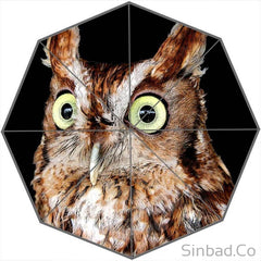 COOL OWL UMBRELLA DESIGN