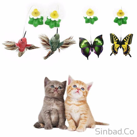 Electric Rotating Colorful Butterfly & Birds Funny dog Cat Toy-Toy-Sinbadco
