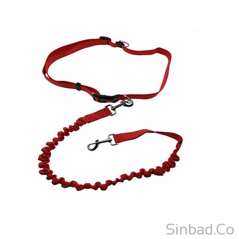 Hands Free Dog Leash - Great for Running & Walking-Sinbadco