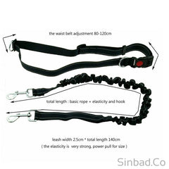 Hands Free Dog Leash - Great for Running & Walking