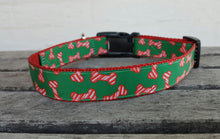 Holiday Bones Dog Collar