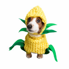dog in corn costume