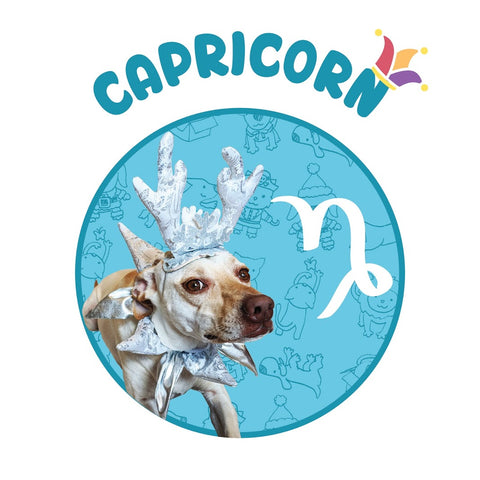 funny dog silver antler Capricorn horoscope