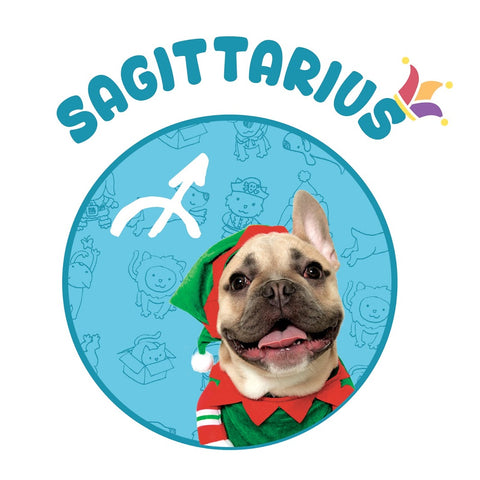 elf dog french bulldog Sagittarius hororscope