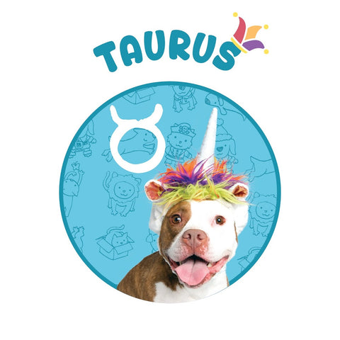 unicorn dog costume Taurus horoscope