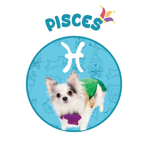 mermaid dog costume pisces horoscope