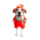 sesame street elmo pet costume