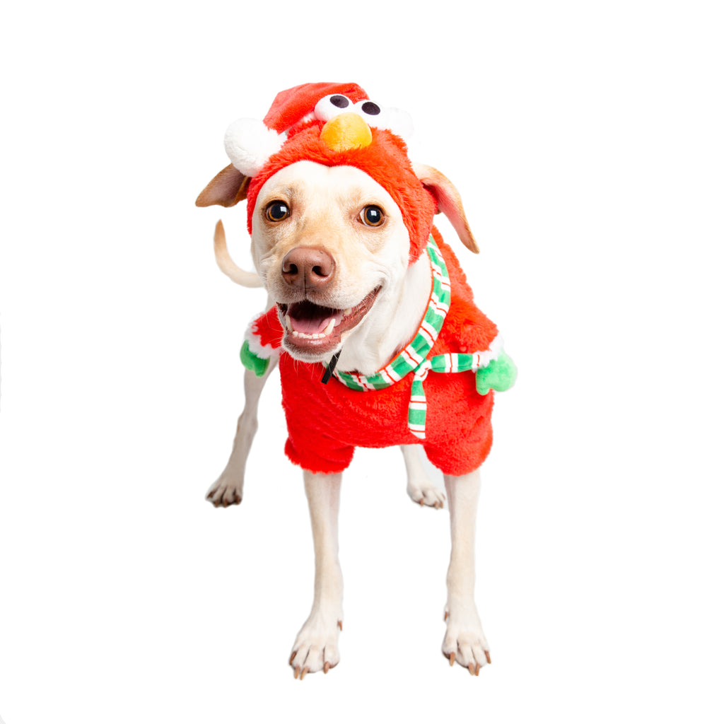 elmo dog costume