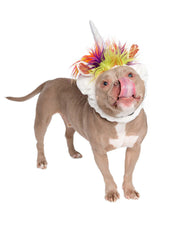unicorn costume for dogs