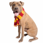 Hipster Wizard Striped Dog Scarf