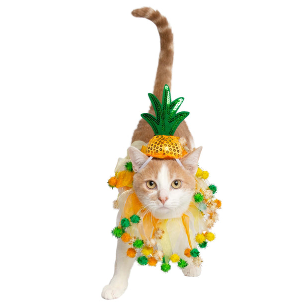 Pineapple Hat and Collar Cat Costume