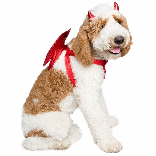 Devil Dog Costume