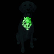 Glow-In-The-Dark Skeleton Pet Bandana