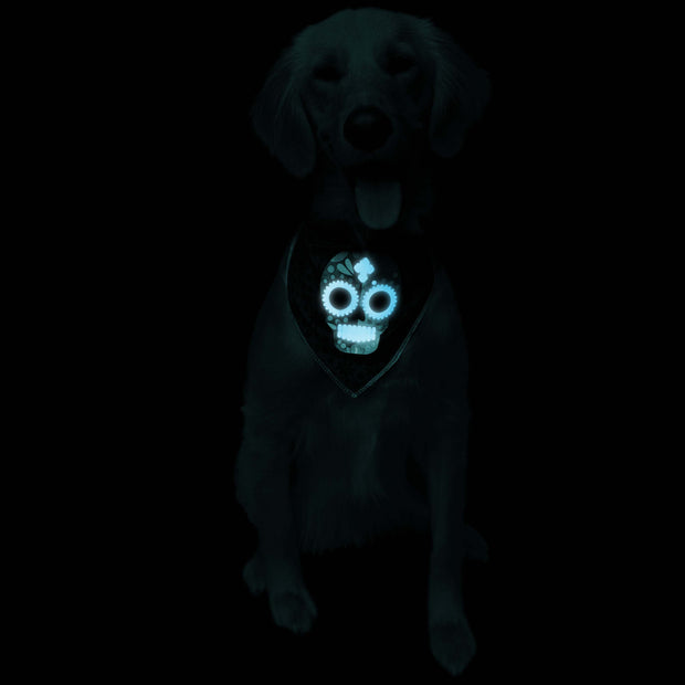 Glow-In-The-Dark Skull Pet Bandana