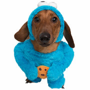 medium sized brown short haired dachshund dog wearing a blue cookie monster dog costume