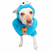 large blond labrador mix wearing a cookie monster dog costume