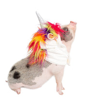 unicorn costume for pigs