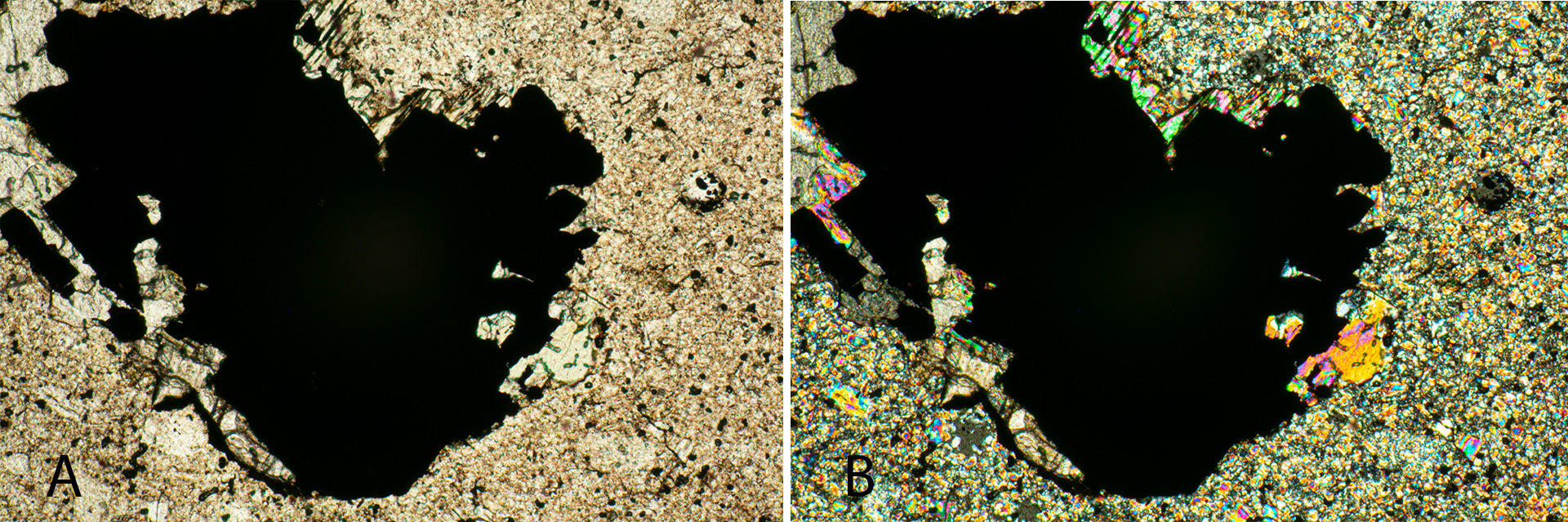 Mineral Section in Bright Field Microscopy