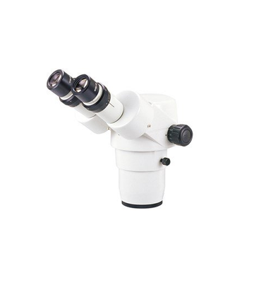SMZ-168 Binocular Head - (1100200500283) - Motic Microscopes