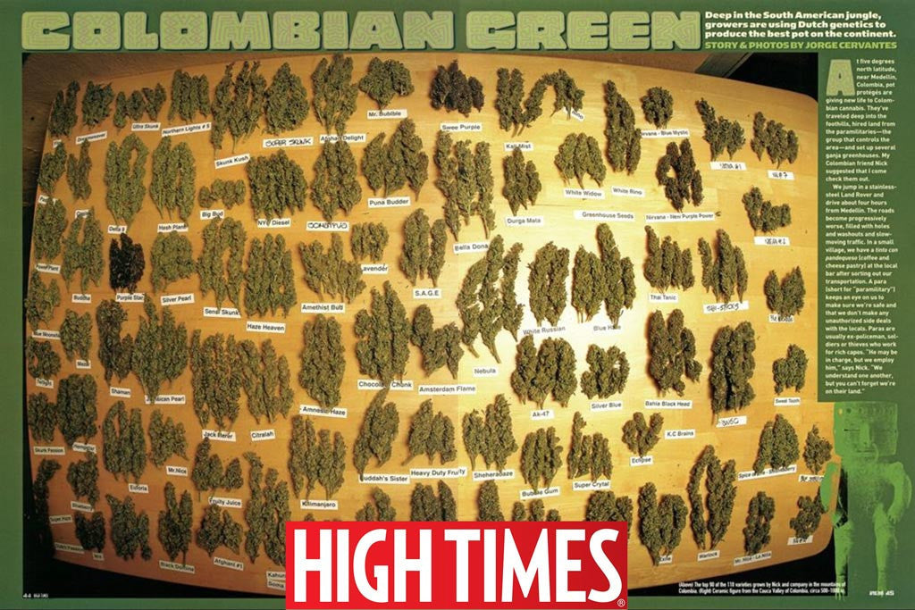 Colombian Green article - HIGHTIMES