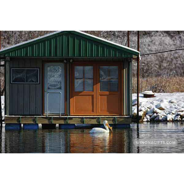 Boathouse with Pelican Winona Minnesota - Art Print