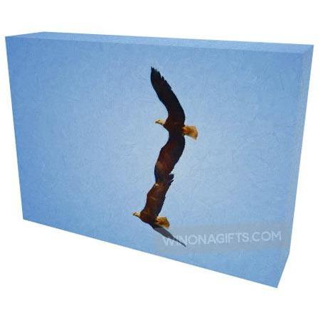 "Bald Eagles Flying Side By Side Digital Painting Canvas Wrap 5"" x 7"" - Kari Yearous Photography WinonaGifts KetoGifts LoveDecorah"