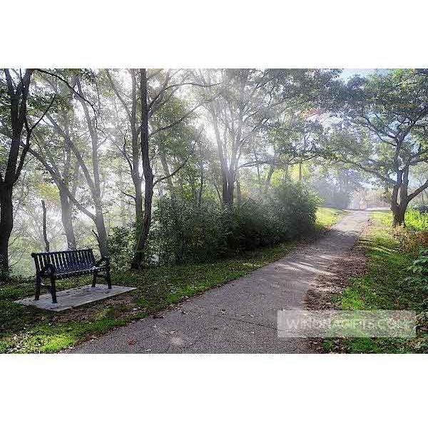 Foggy Path At Garvin Heights Winona Minnesota - Art Print - Kari Yearous Photography KetoLaughs