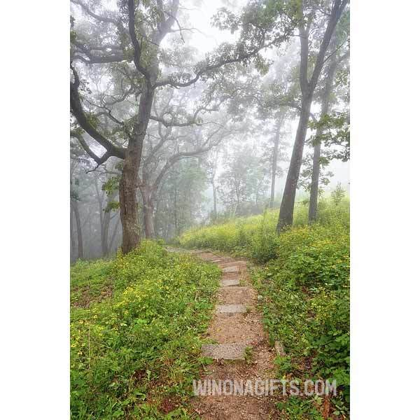 Garvin Heights Steps Foggy Morning Winona Minnesota - Art Print - Kari Yearous Photography WinonaGifts KetoGifts LoveDecorah