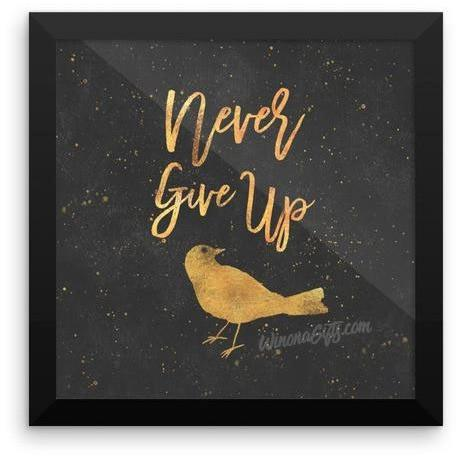 Framed Inspirational Poster, Never Give Up - Kari Yearous Photography KetoLaughs