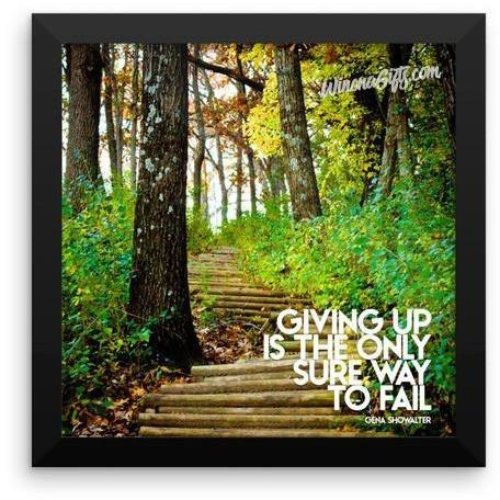 Framed Inspirational Poster Giving Up Only Way To Fail, Garvin Heights Steps - Kari Yearous Photography WinonaGifts KetoGifts LoveDecorah