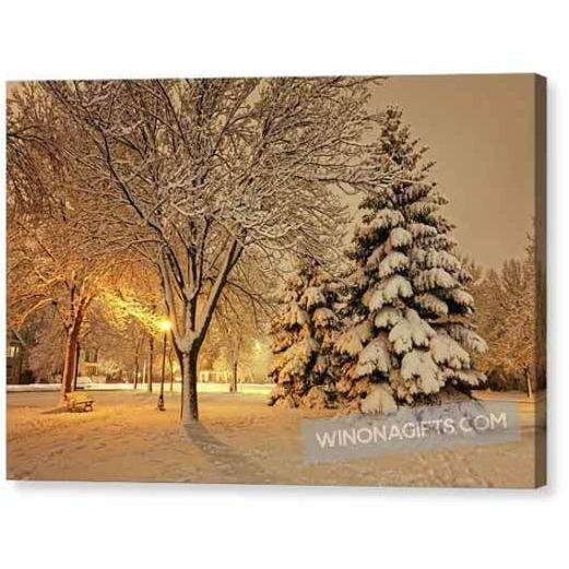 Snowy Night At Windom Park Winona Minnesota - Canvas Print - Kari Yearous Photography WinonaGifts KetoGifts LoveDecorah