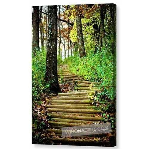 Garvin Heights Steps Winona Minnesota - Canvas Print - Kari Yearous Photography WinonaGifts KetoGifts LoveDecorah