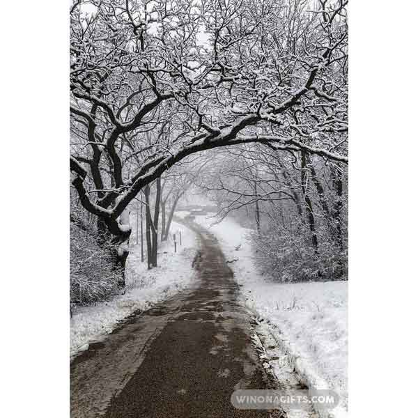 Winter Walkway at Garvin Heights Winona Minnesota - Art Print
