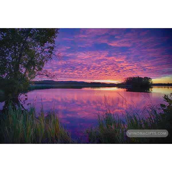 Winona Minn Sunrise At Rileys Lake - Art Print - Kari Yearous Photography WinonaGifts KetoGifts LoveDecorah