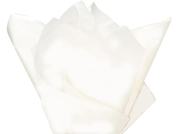 "White Solid Tissue 20""x30"""