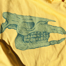 Ice Age Skull adult MEDIUM shirt