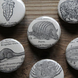 Antique animal prints by RadCakes pinback buttons for sale at TPRFM