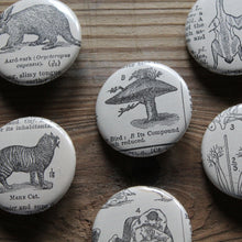 6 pinback buttons: Mushroom Tree, Aardvark, Wrestlers, and other antique images - RadCakes Shirt Printing