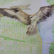 Watercolor osprey by Ryan Wade Sea Girt map for sale at radcakes.com
